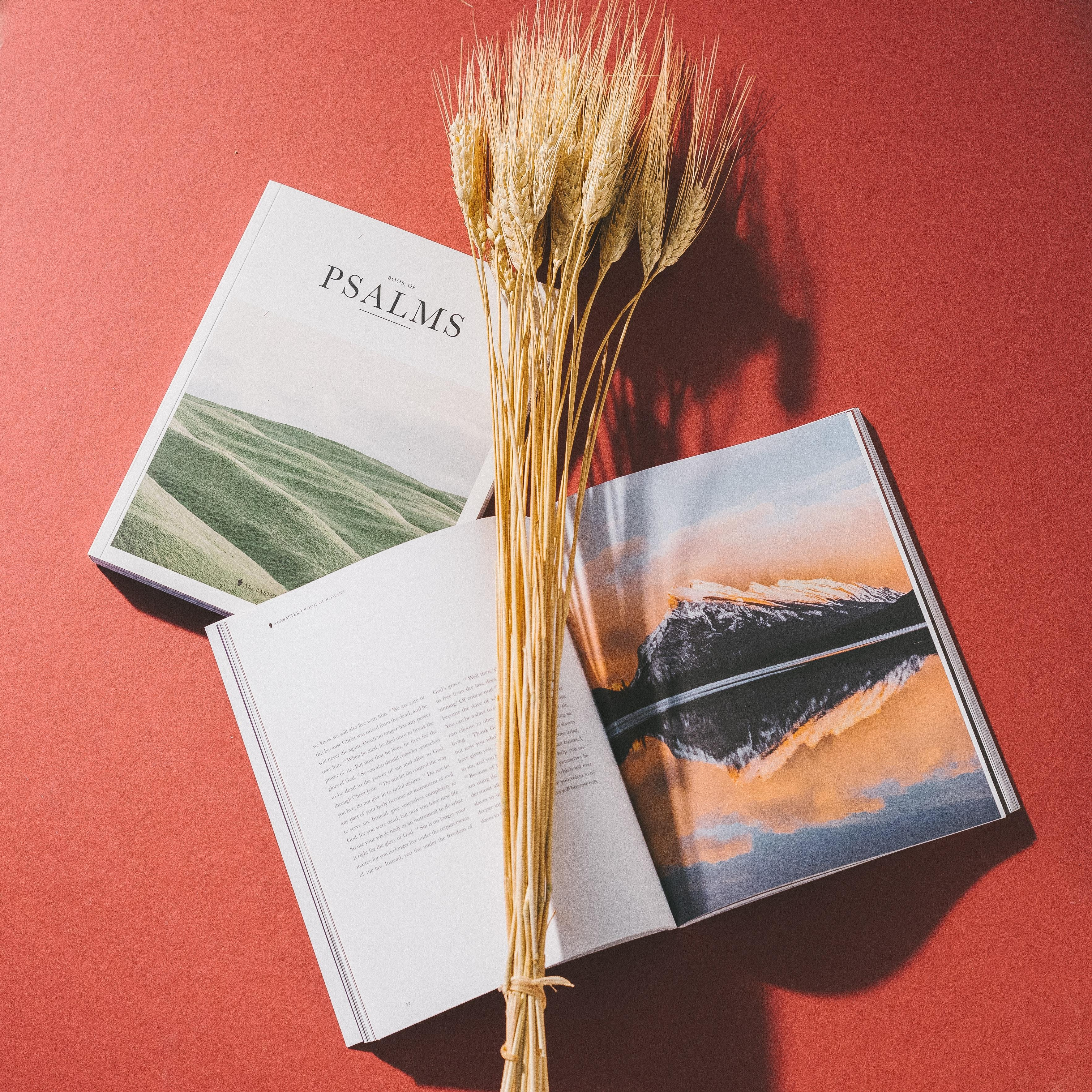 books and wheat